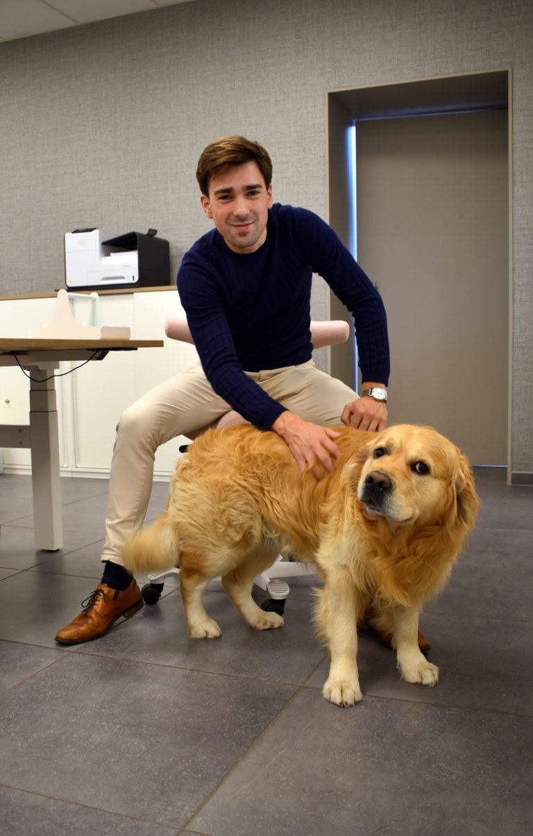 Kantoorhond-kantoorhond