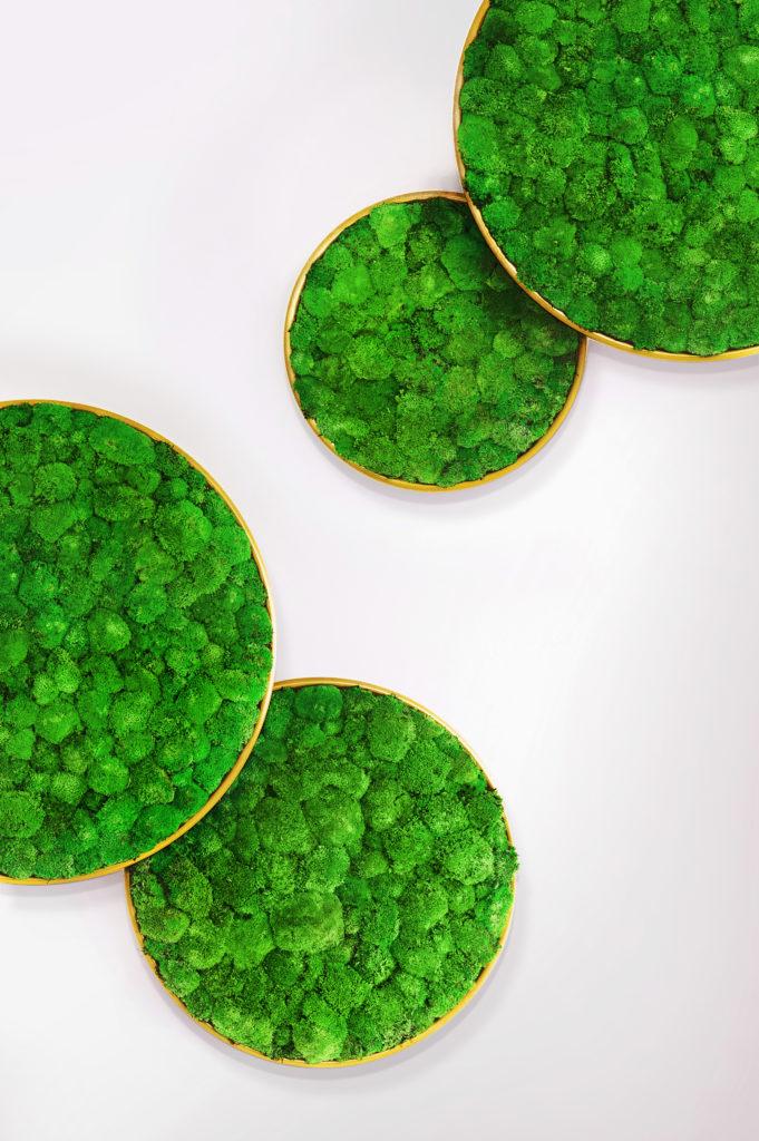 mos-op-kantoor-akoestiek-g-circles-loff-maatkantoren-greenmood
